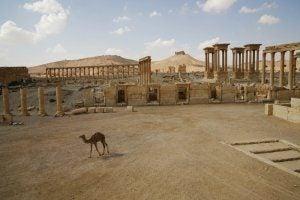 Voyage en Syrie – Informations touristiques