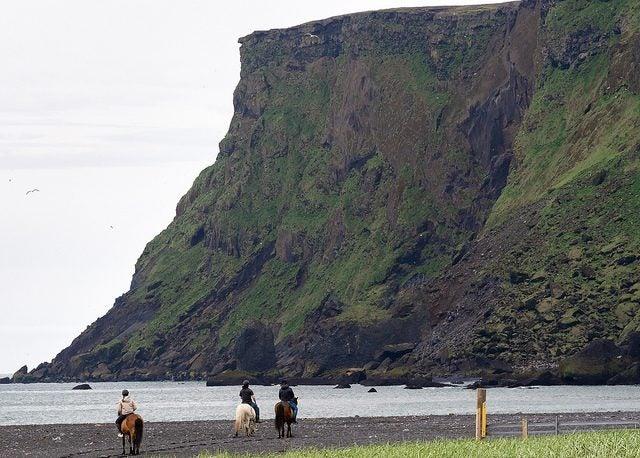 Balade à cheval à Vik