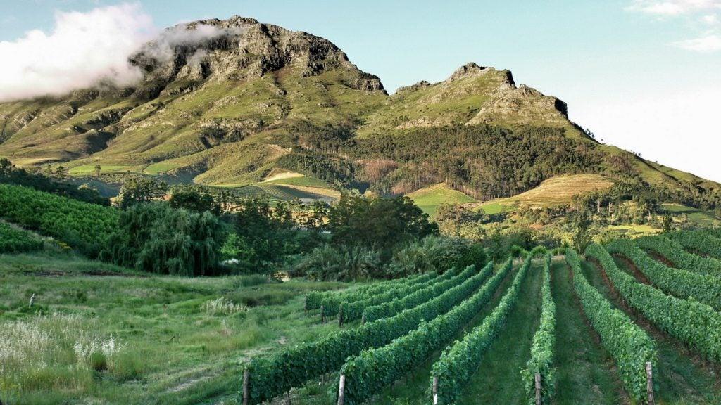 Stellenbosch Afrique du Sud Opodo