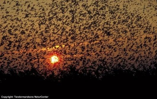 the black sun_opodo travel blog_natual phenomena_