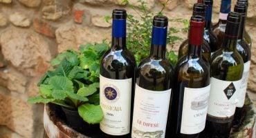 Opodo vous emmène sur la route des vins
