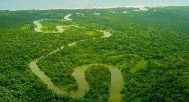 Les patrimoines de l'humanité `a sauver : la liste de l'UNESCO