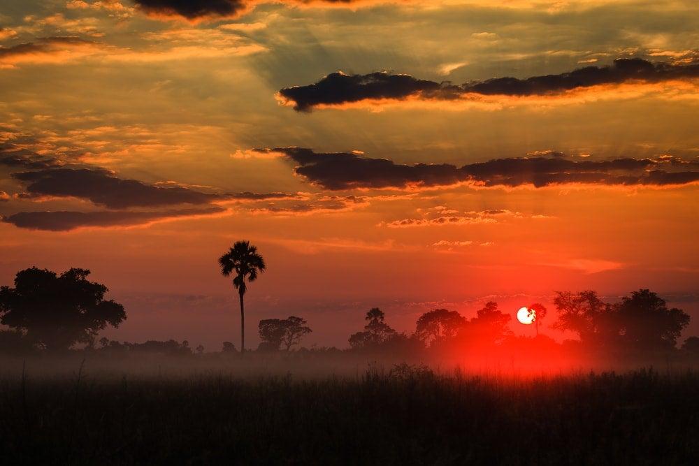 delta okavango botswana aube - blog opodo