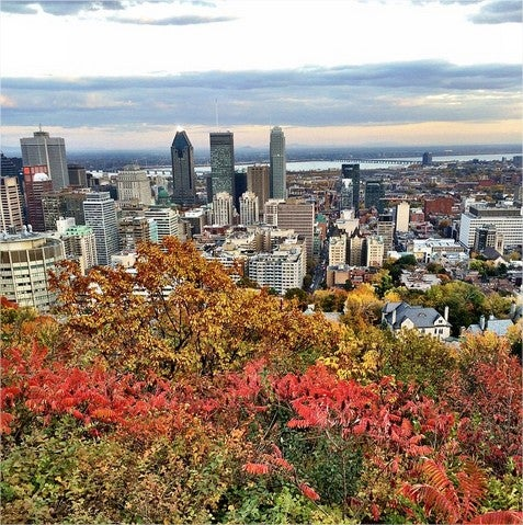 Mont Royal in Autumn