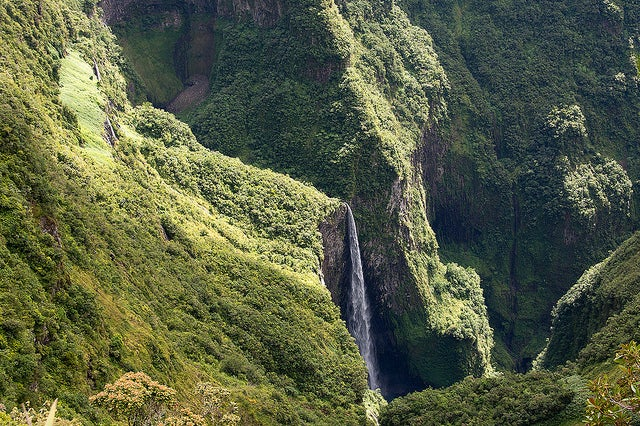 Trou de fer La Réunion
