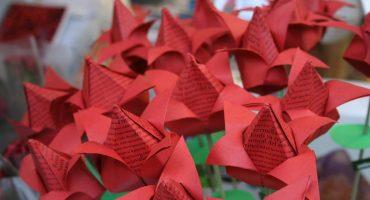 Roses et livres pour la Sant Jordi à Barcelone