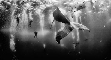 Les plus belles photos du concours National Geographic Traveler Photo