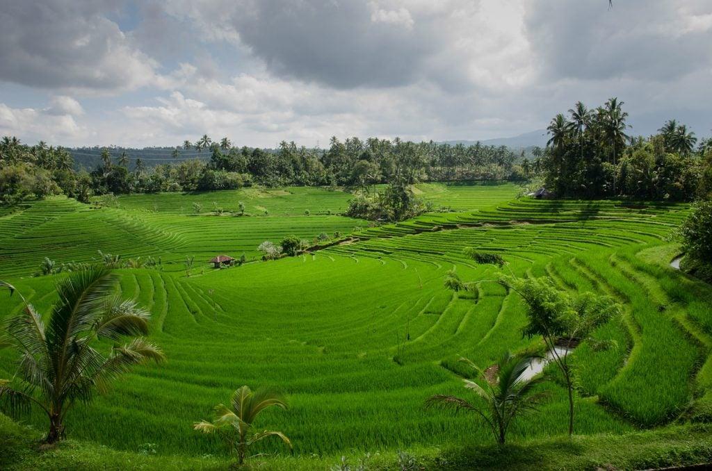 Bali - blog Opodo