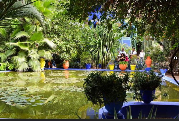 Jardin de Majorelle