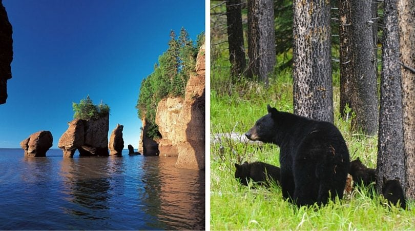 Canada Acadie - blog Opodo