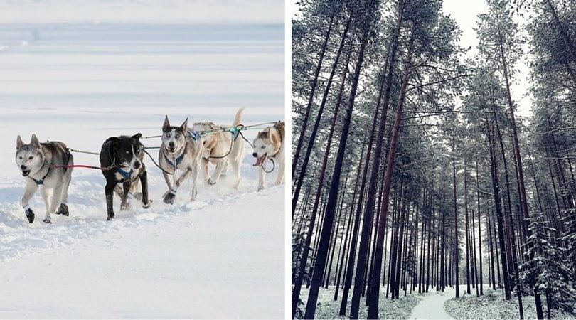 Canada Yukon - blog Opodo