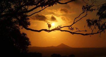 Les meilleures photos du concours Travel Pics «Nature Lovers» !