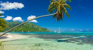 Partez à Tahiti: 3×2 billets à gagner avec Air Tahiti Nui!