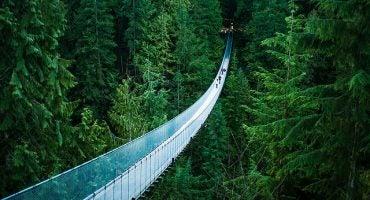 Les 20 ponts les plus spectaculaires au monde