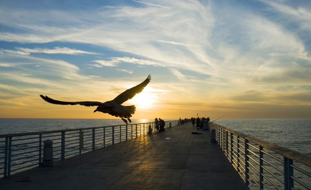hermosa beach pier - blog opodo