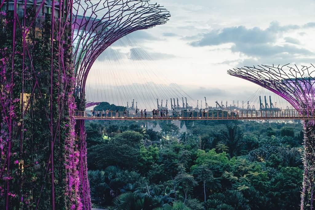 singapour gardens - blog Opodo
