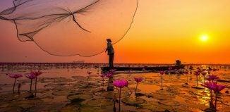 thailande lac lotus - blog Opodo
