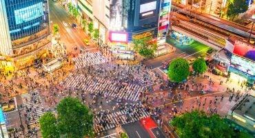 Nos recommandations à Tokyo