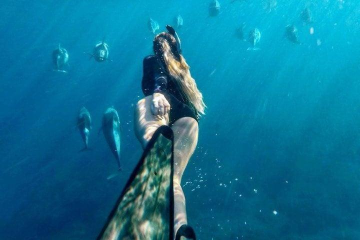 Nager avec les dauphins - blog Opodo