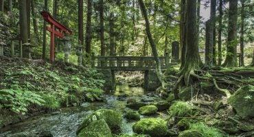 Que faire à Hachinohe ? Découvrez le Japon hors des sentiers battus !
